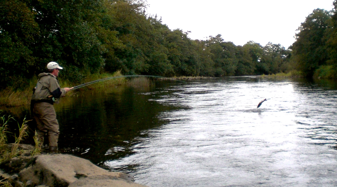 Fly fishing ireland for Fishing in ireland